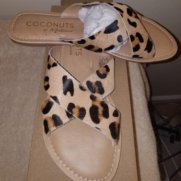 matisse shoes leopard